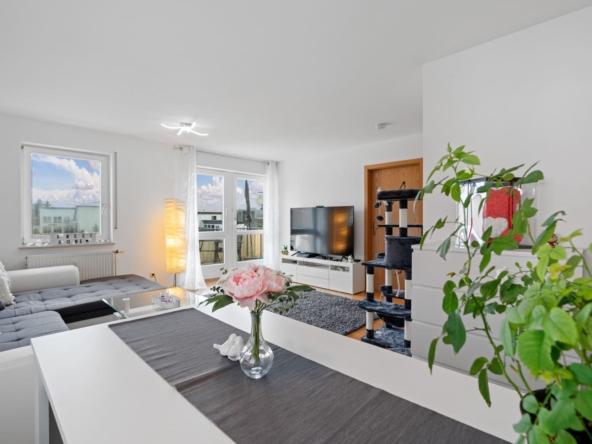 immobilien friedrichshafen 2